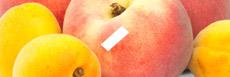 E-liquide saveur pêche-abricot